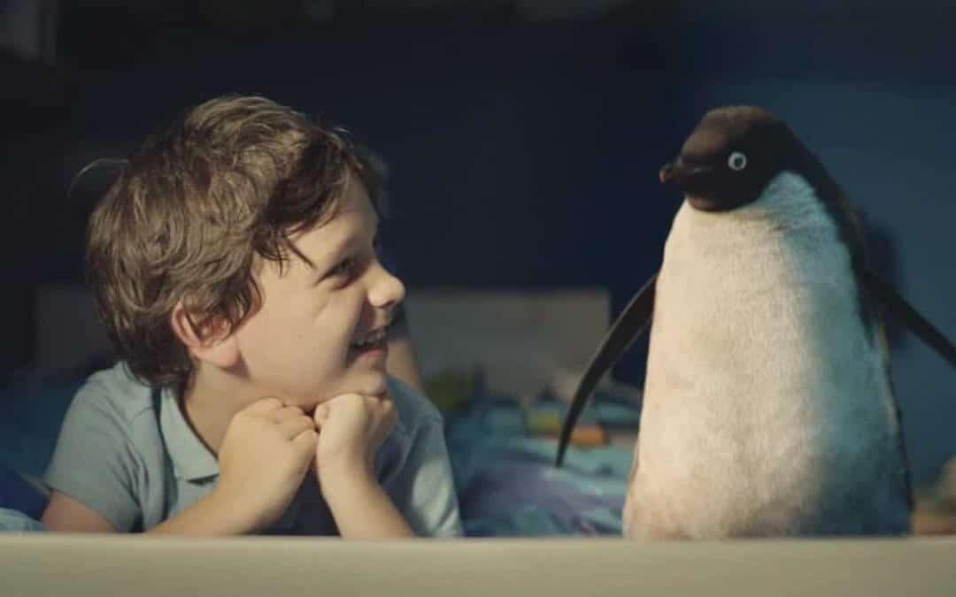 Story des Monats: Der Junge und sein Pinguin
